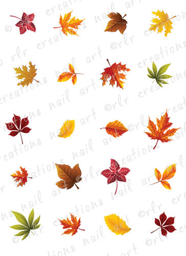 20 Fall Leaves Ortment Water Slide Nail Art Decals Autumn Leaf Nails Ebay