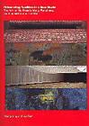 Reinventing Tradition in a New World: The Arts of Gu Wenda, Wang Mansheng, Xu Bing, and Zhang Hongtu by Wang Ying, Yan Sun (Paperback, 2005)