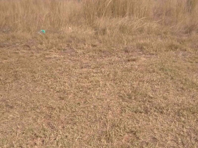 [object Object] sq. meter Land in Vaalbank For Sale