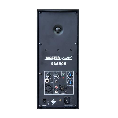 costo effettivo Master Master Master Audio SPB25 Modulo BI-AMPLIFICATO 200W RMS  liquidazione