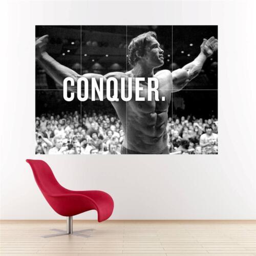 Arnold Schwarzenegger add Huge Poster A359