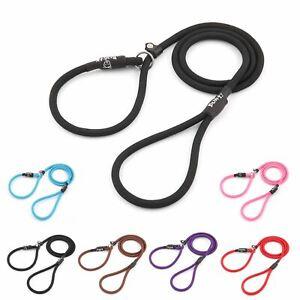 Bunty-Strong-Nylon-Slip-On-Rope-Dog-Puppy-Pet-Lead-Leash-No-Collar-Needed
