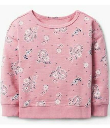 Gymboree Toddler Girl/'s Pullover Pink Paisley Sweatshirt NWT!