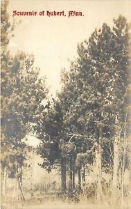Hubert-Minnesota-Among-the-Trees-1920s-Real-Photo-Postcard-RPPC