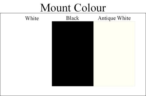 Weiß Foto Bilderrahmen mit Weißen und Schwarz Halterungen Alle Verfügbare Größe