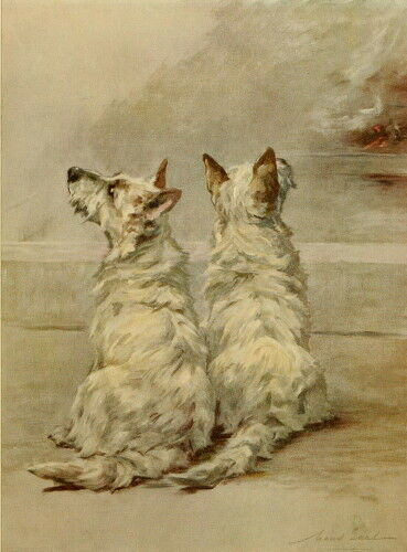 1914 Maud EarlTwo West Highland Terrier Dog Dogs NEW Large Note Cards