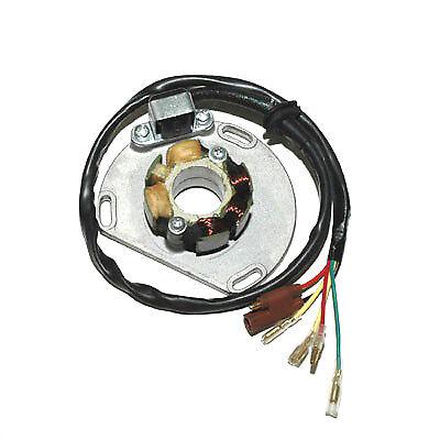 17418 Electrosport Statore Ktm Mx 300 (98) Completa In Specifiche
