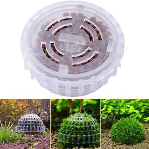 5cm-Aquarium-Fish-Tank-Media-Moss-Ball-Live-Plant-Filter-Filtration-Decor