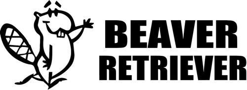Beaver Retriever Personality Test Home Decor Car Truck Window Decal Sticker