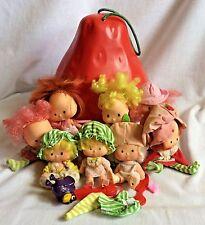 Large Strawberry Carrier & 9 Vintage 1979 Strawberry Shortcake Dolls & Clothes
