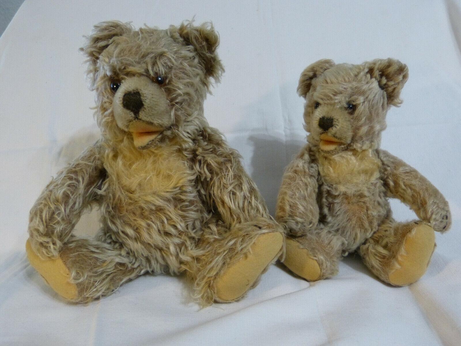 Steiff Teddy wohl     Zotty      Konvolut mit 22 cm und 26 cm