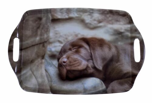 Sleeping Labrador Chiot Worn Boot Marron Gris Large Mélamine transportant Plateau 48X31CM