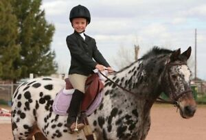 Equine Couture English Horse Show Youth Childs Black Hunt Coat Size 12 Girls