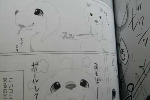 KTQ48 Shisokuinuka senmon furry B5 120pages Doujinshi KTQ #11 KEMONO anthology