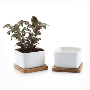 2 Pcs 3 5 Quot White Square Ceramic Pot Plant Flower Succulent