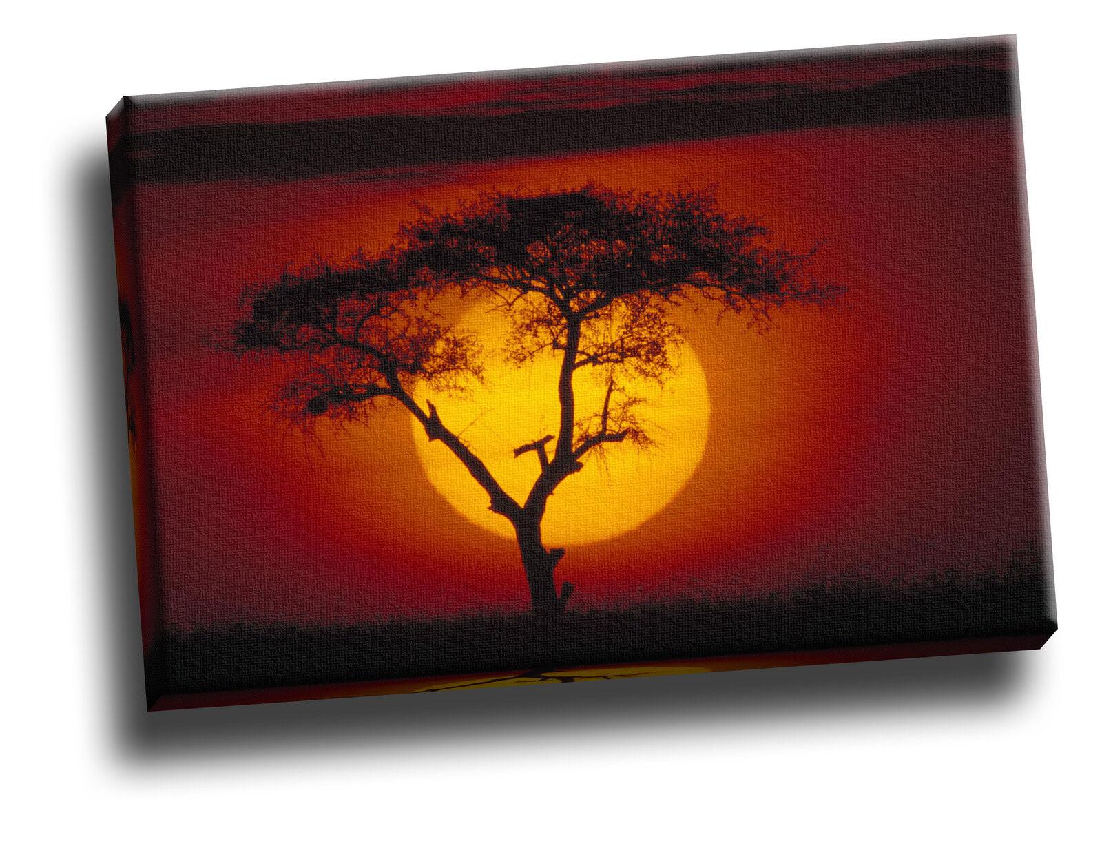 Acacia arbre sur la savane Kenya giclée sur toile Sunset Image Mur Art