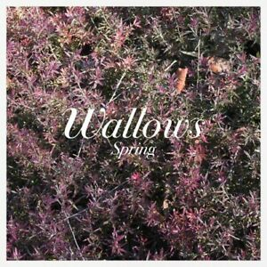 Wallows-Spring-Vinyl-Used-Very-Good-Explicit-Version
