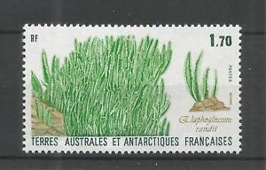 F-S-amp-d-039-1988-herbe-a-elephant-SG-232-U-mm-NH-Lot-5775-A