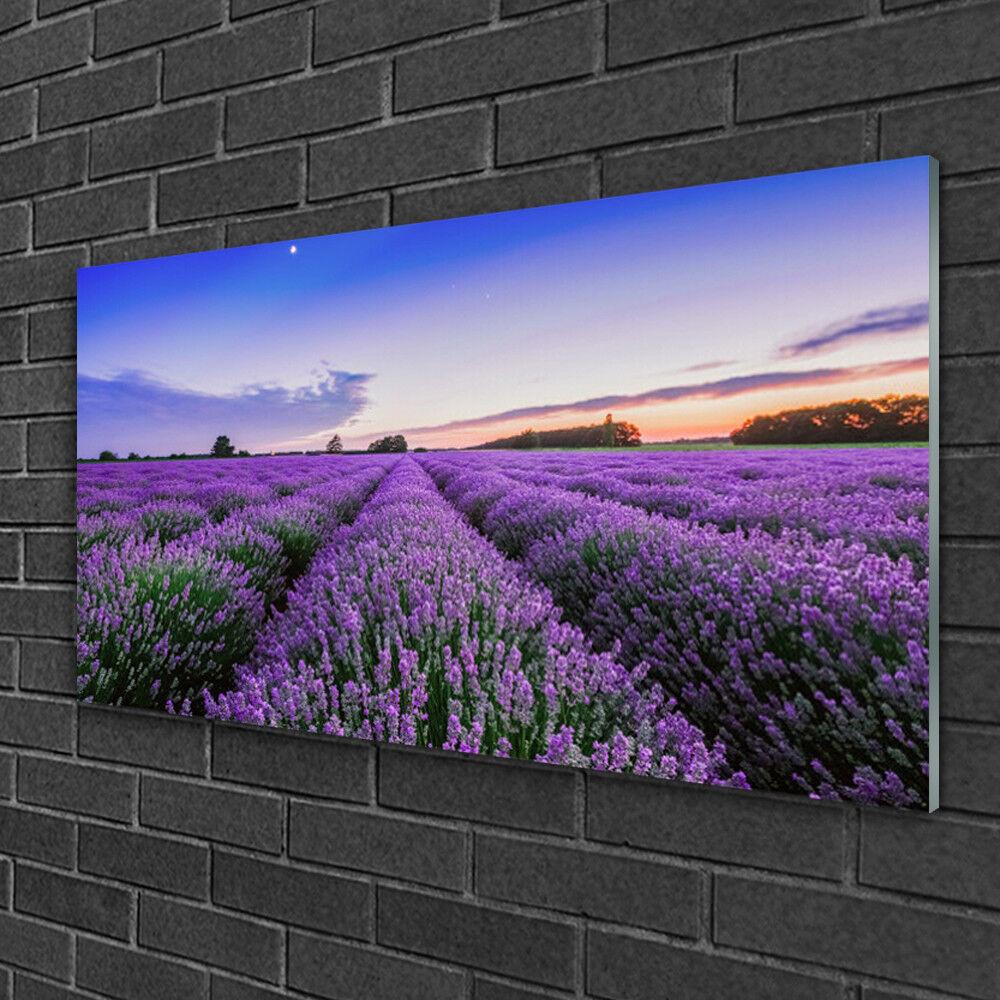 Tableau sur verre Image Impression 100x50 Nature Prairie Fleurs