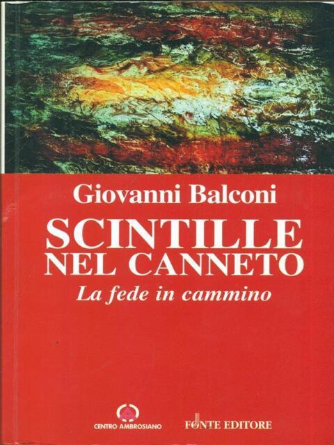 SCINTILLE NEL CANNETO  GIOVANNI BALCONI CENTRO AMBROSIANO 2003