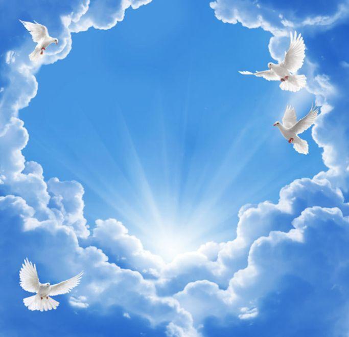 3D Pigeon Clouds Ceiling WallPaper Murals Wall Print Decal Deco AJ WALLPAPER GB