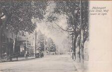 MA ~ NEWBURYPORT ~ WOLF TAVERN on TREE-LINED STATE STREET ~ c1905 BEAUTY