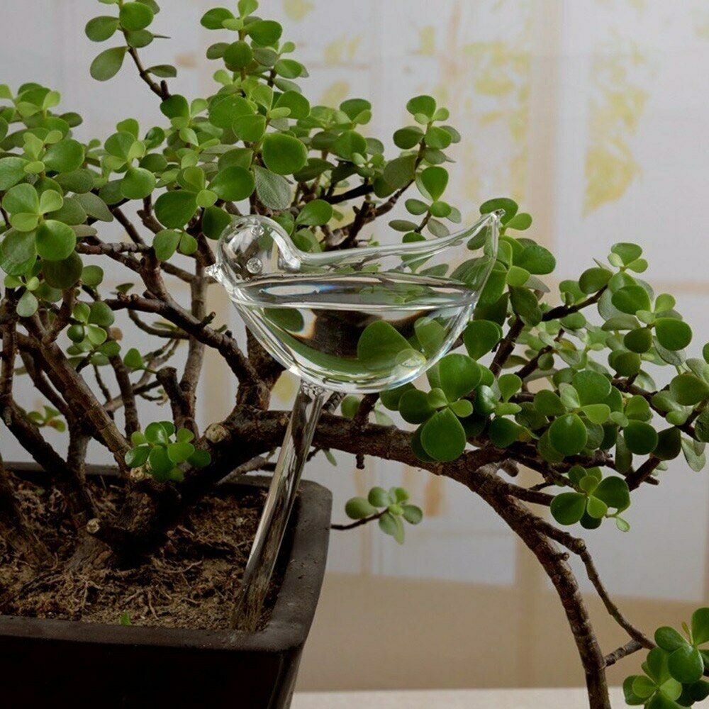 Plant Waterer Bird Self Watering Bulb Hand Blown Clear Glass Globe for Indoor