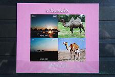 Wildtiere 33 wild animals wildlife Kamel Dromedar Malawi 2011 postfrisch ** MNH