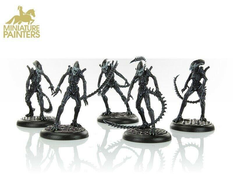Alien vs Prougeator La Chasse Commence entièrement peint