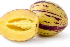 Pepino-Seeds-Melon-pear-or-sweet-cucumber-Exotic-fruit-Ukraine-4-seeds
