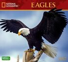 Eagles by National Geographic 9781772180244 Calendar 2016