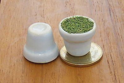 1:12 Scale 2 Filled White Ceramic Flower Plant Pots Tumdee Dolls House Garden