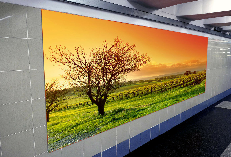 3D Farm rot Sky Tree 8 Wall Paper Murals Wall Print Wall Wallpaper Mural AU Kyra