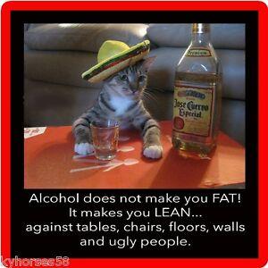 Funny Humor Jose Curevo Alcohol Cat Refrigerator Magnet