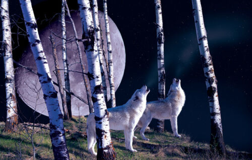 Jigsaw Puzzle Animal Wild Night Call Wolves 1000 pieces NEW Made in the USA