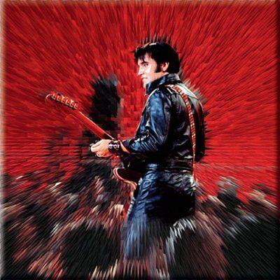 Caritatevole Elvis Presley Fridge Magnet Calamita Shine Official Merchandise