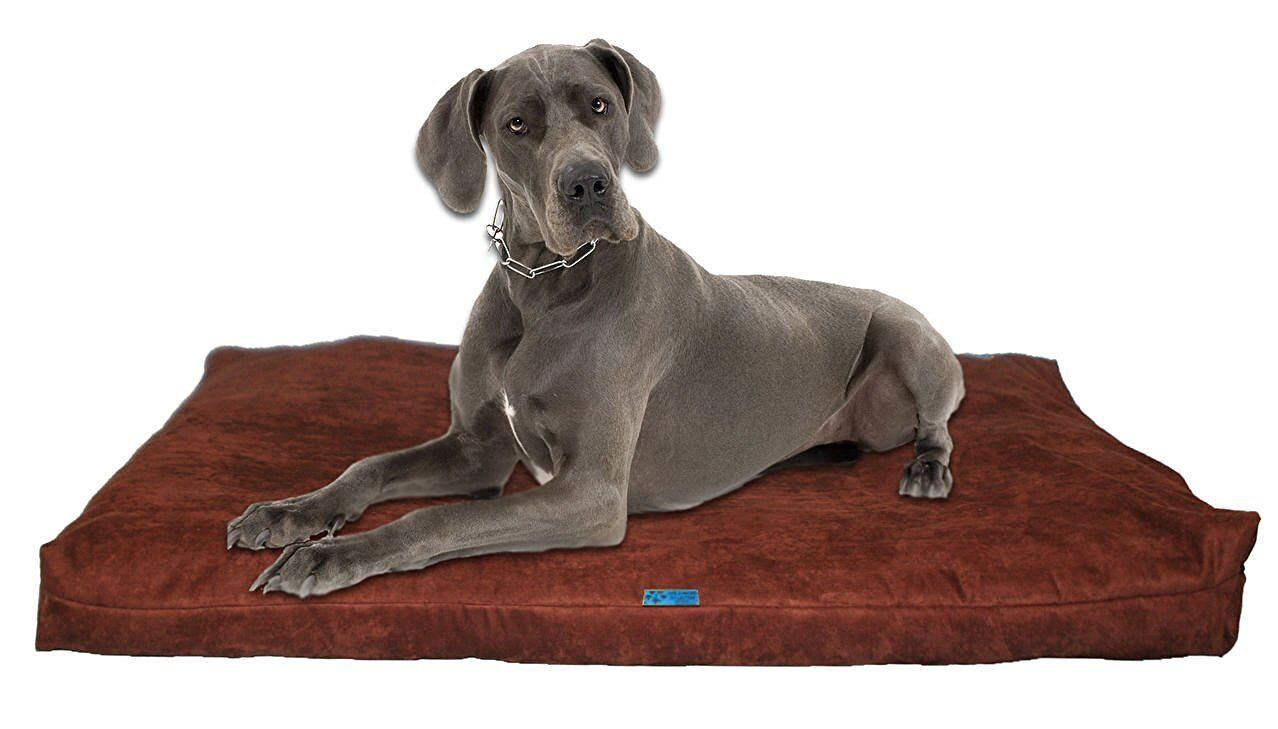 Five Diamond Collection Shredded Memory Foam Orthopedic Dog Bed,Made In USA (Bro