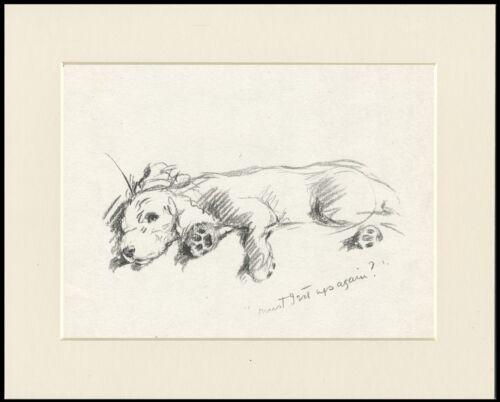 POODLE GRETA GARBO CHARMING LUCY DAWSON DOG ART PRINT READY MOUNTED