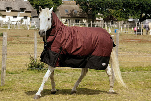 Rhinegold Aspen Heavy Weight Turnout Rug 350gsm 1000denier