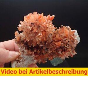 7285-Fluorite-Creedite-ca-12-10-7-cm-Rodeo-Mine-Mexico-2010-MOVIE