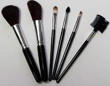 Brand New Eve 6 Piece Makeup Brush Set Small to Medium