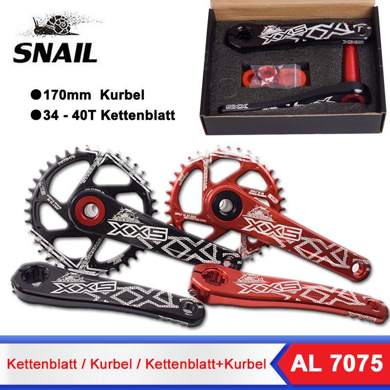 Snail Fahrrad 34 36 38 40T Narrow Wide Kettenblatt 170mm Kurbel 7075 Aluminium