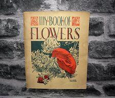 My Book of Wild Flowers ( The Children's Nature Books ) Daunt-1943 PB
