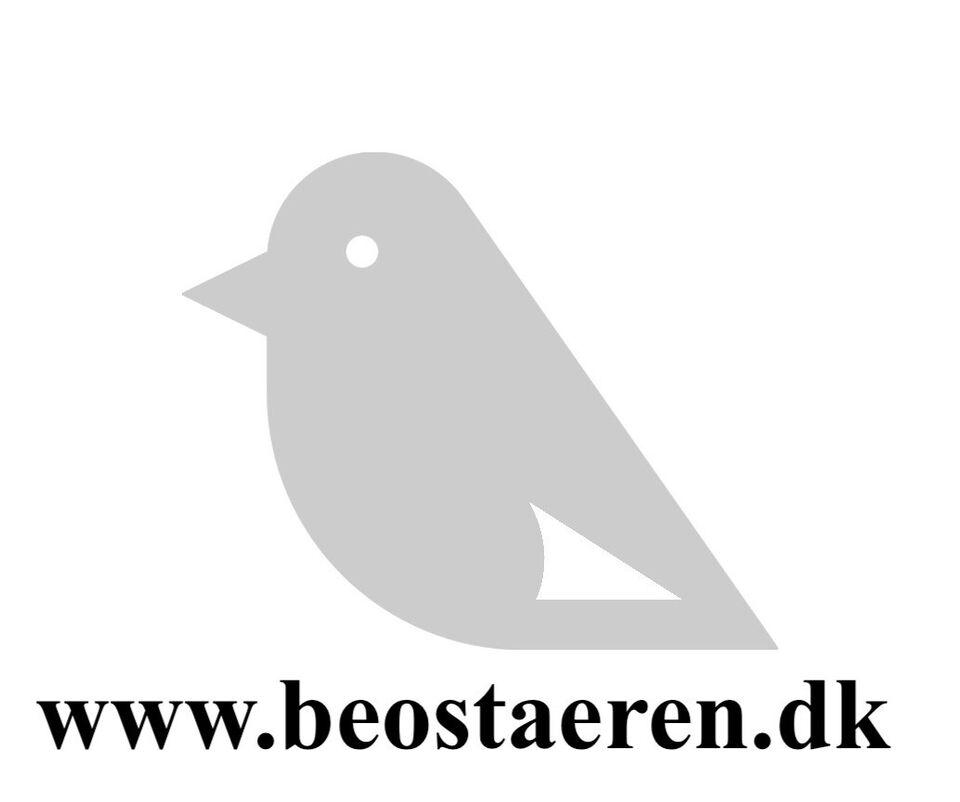 "Bang & Olufsen - BEOVision Avant 85"""