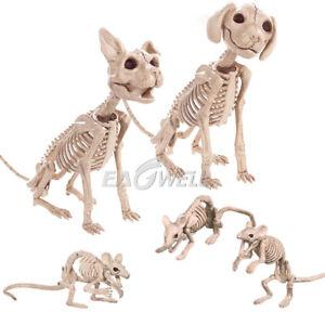 2018 Halloween Skeleton Cat Dog Mouse Prop Animal Bones Party Shop Decor Horror