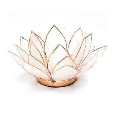Hermoso Porta Té Luz de la vela de loto Cápiz Shell-Blanco natural