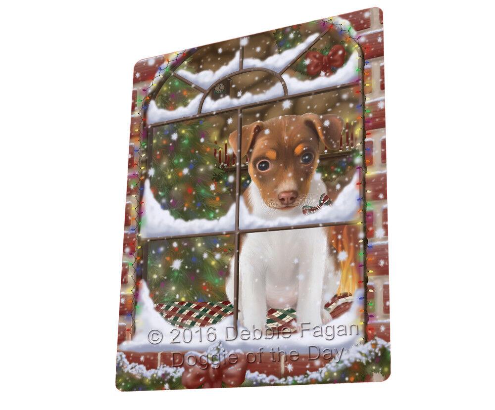 Please Come Home For Christmas Rat Terrier Dog Sitting Window Blanket BLNKT54192