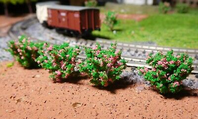 10 Cespugli Verde Scuro, Rosa Prospera, 28 Mm Ad Alta-mostra Il Titolo Originale Curare La Tosse E Facilitare L'Espettorazione E Alleviare La Raucedine