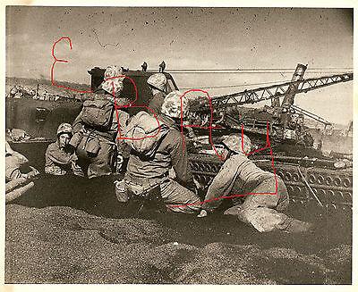 WWII 8X10 PHOTO MARINES PINNED DOWN ON BEACHES OF IWO JIMA 1945 LOOK