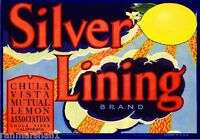 Chula Vista San Diego County Silver Lining Lemon Citrus Fruit Crate Label Print